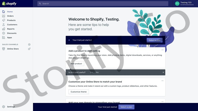 Step 2: Set up Your Shopify Online Store